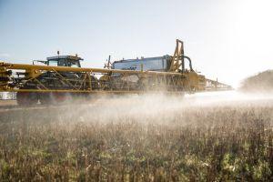 pulverisation-de-pesticides-un-champ-de-cereales